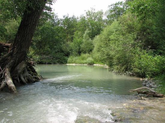 Rivière l'Artuby